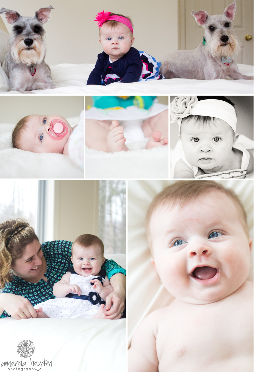 5 month old girl ottawa baby photographer