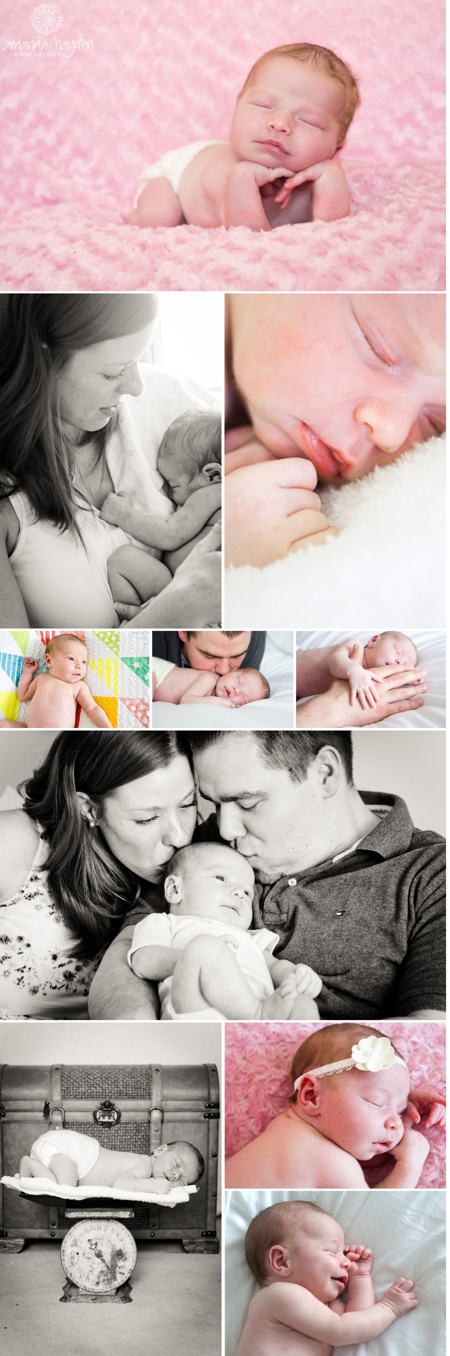 8 day old newborn baby girl ottawa newborn photographer